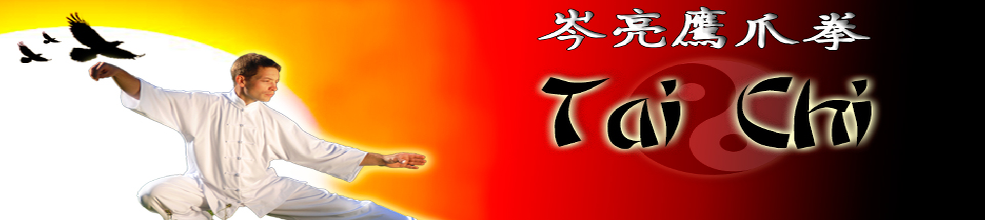 Chinese Martial Arts of Kung Fu & Tai Chi